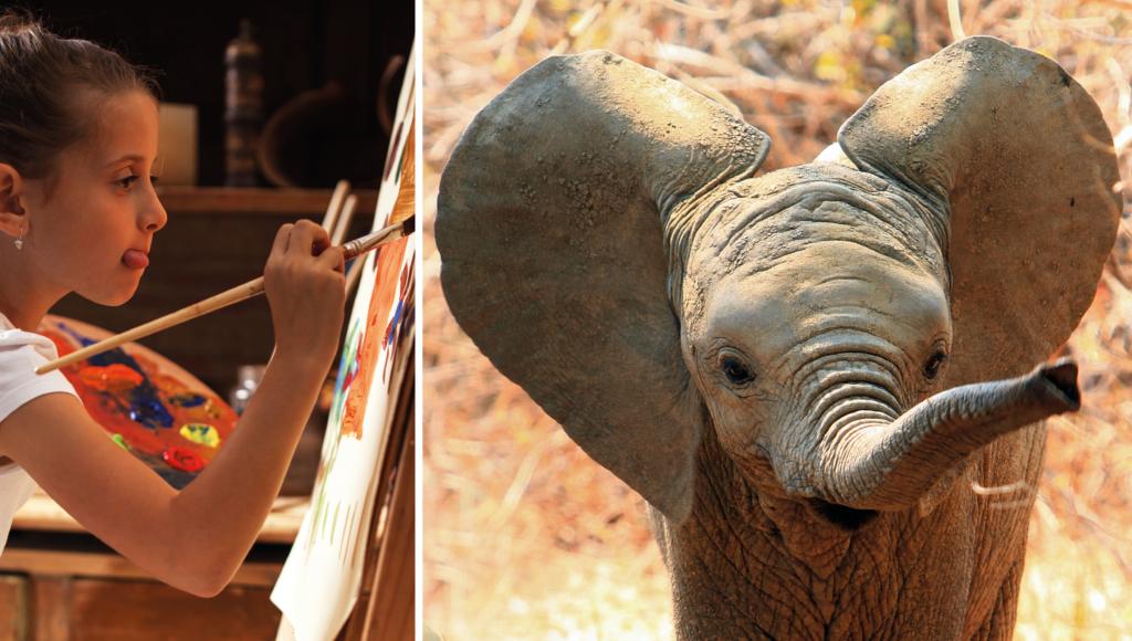 Vi ska ha elefanter i skolan! Del 2/2